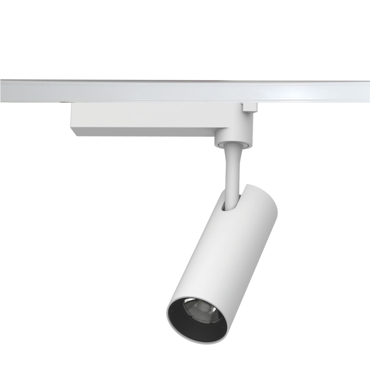 Classification and purchase skills of track lights